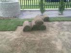 rozwijanie trawy w rolkach
